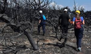 Φωτιά στο Μάτι - Καταγγελία: «Δεν λειτουργούσαν οι ασύρματοι της Αστυνομίας»