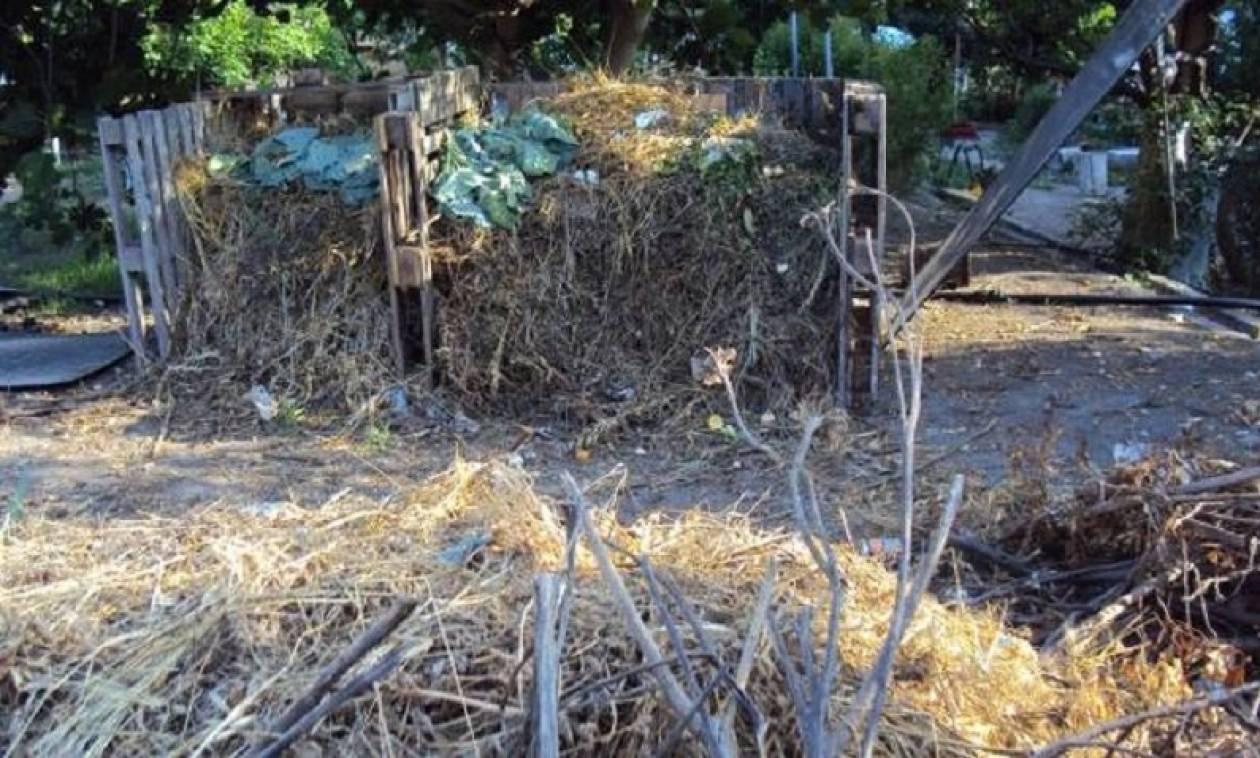 Λασίθι: Θρίλερ με σκελετό στη Χρυσή - Βρέθηκε από τουρίστα μέσα σε σακούλα
