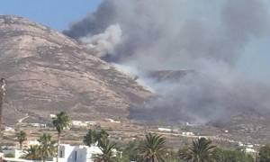 Φωτιά ΤΩΡΑ: Ολονύχτια μάχη με τις φλόγες σε Πάρο, Ζάκυνθο και Εύβοια
