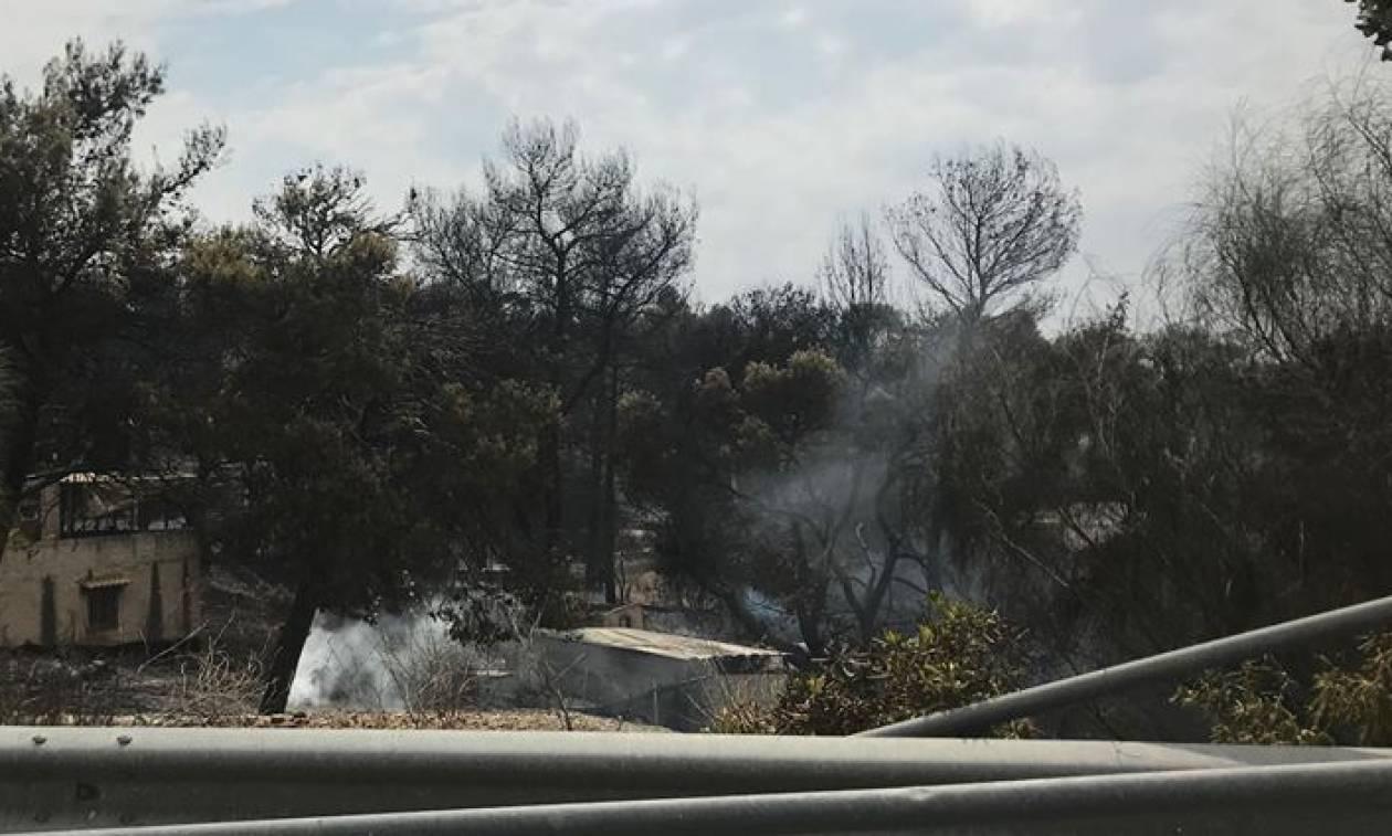 Φωτιά: Eπίδομα ανεργίας στους εργαζομένους επιχειρήσεων που κάηκαν