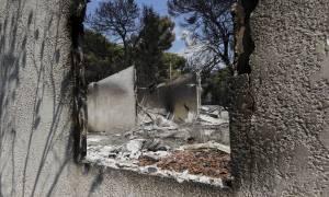 Όλα όσα πρέπει να κάνετε σε περίπτωση πυρκαγιάς (vids)