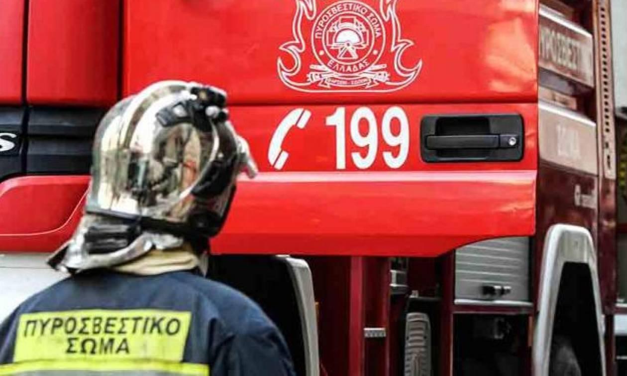 Χαλκιδική: Δύο παιδιά προσήχθησαν για πρόκληση φωτιάς
