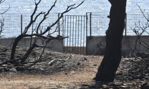 Φωτιά – Αποκάλυψη σοκ - «Κάντε ό,τι νομίζετε»: Η απάντηση της Πυροσβεστικής σε όσους καίγονταν