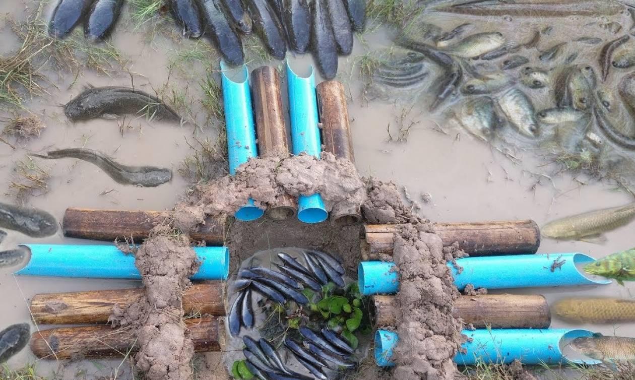 Απίστευτη παγίδα για εγγυημένη ψαριά! Μόλις τη δείτε θα τη φτιάξετε αμέσως! (video)