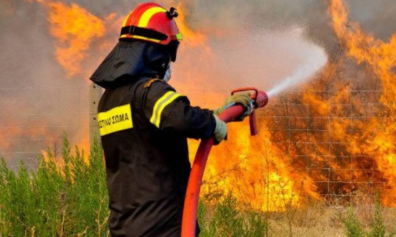 Πολύ υψηλός o κίνδυνος πυρκαγιάς σήμερα -  Δείτε σε ποιες περιοχές (χάρτης)