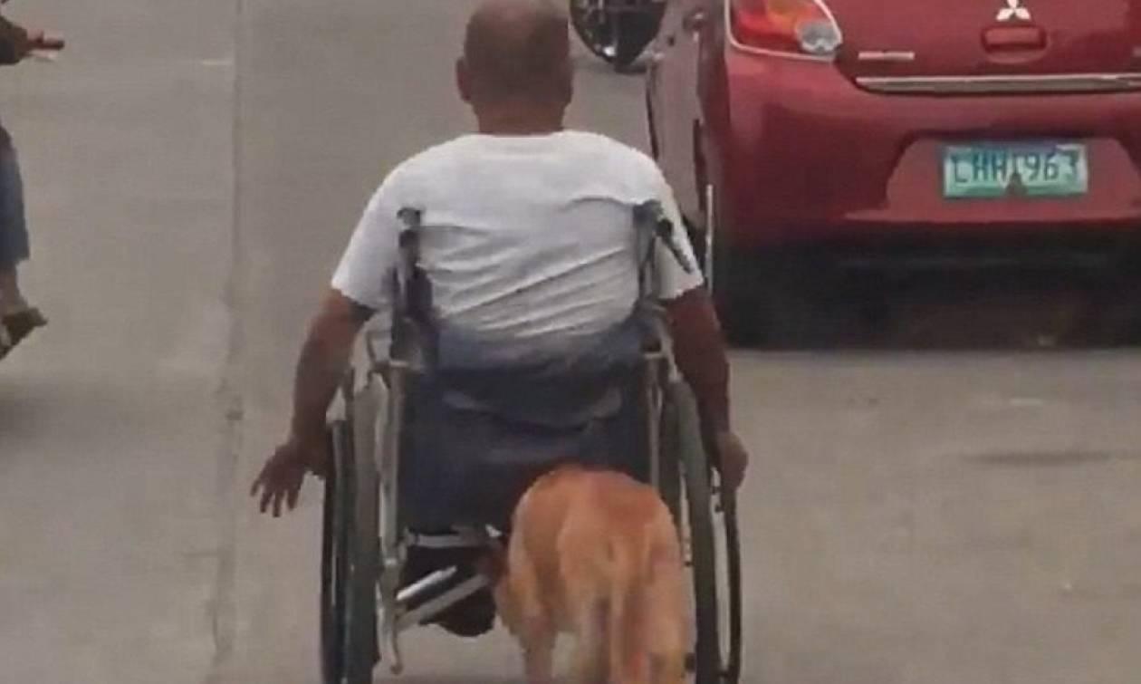 Συγκλονιστικό βίντεο: Σκύλος σπρώχνει το αναπηρικό καροτσάκι του αφεντικού του