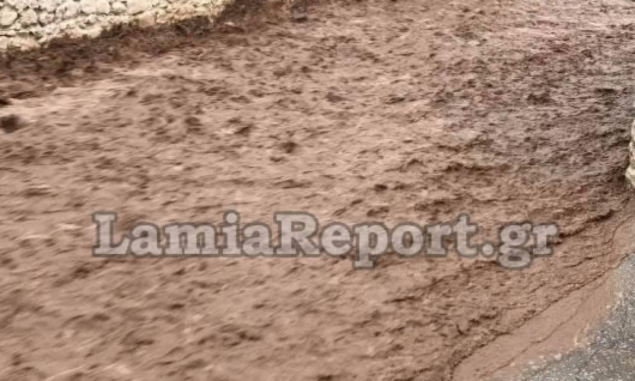Καιρός: Χάος στη Φθιώτιδα - Πλημμύρες και καταστροφές από τις καταιγίδες