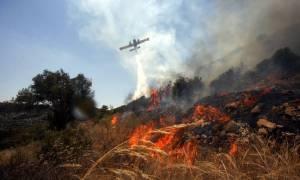 Φωτιά: Ανοιχτή πληγή στο «κορμί» της Κύπρου οι πυρκαγιές - Στάχτη τεράστιες εκτάσεις