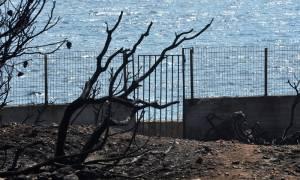 Φωτιά Μάτι: Συγκλονιστική μαρτυρία για το οικόπεδο του θανάτου - «Έτσι πέθαναν οι 26 άνθρωποι» (vid)