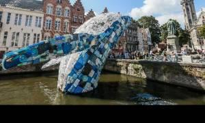 Μια «φάλαινα» εκπέμπει SOS για το περιβάλλον