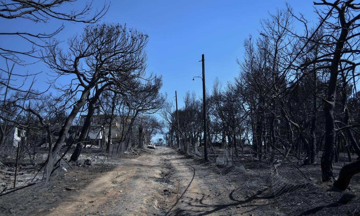 Εικόνες καταστροφής: Το Μάτι δύο εβδομάδες μετά τη φονική πυρκαγιά - 91 οι νεκροί (pics)
