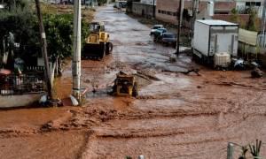 Μπουλντόζες στη Μάνδρα: Αρχίζει η κατεδάφιση αυθαιρέτων (vid)