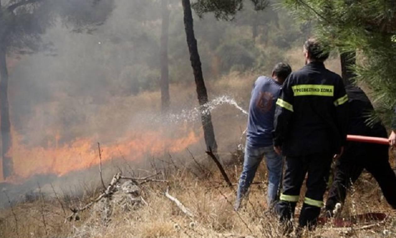 Υψηλός ο κίνδυνος εκδήλωσης πυρκαγιάς την Τρίτη - Δείτε σε ποιες περιοχές