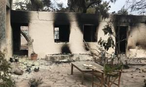 ΕΦΚΑ: Άνοιξε η ηλεκτρονική αίτηση για παροχές σε πυρόπληκτους