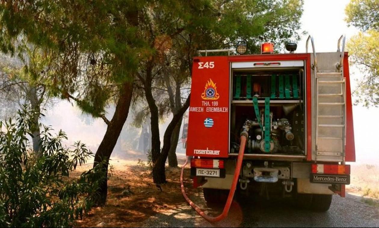 Προσοχή! Στο «κόκκινο» σήμερα ο κίνδυνος πυρκαγιάς – Δείτε σε ποιες περιοχές (χάρτης)