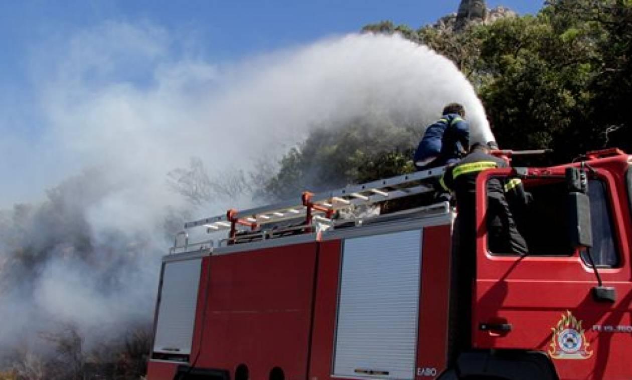 Φωτιά Τώρα: Μεγάλη πυρκαγιά στην Αγία Μαρίνα Νέας Μάκρης