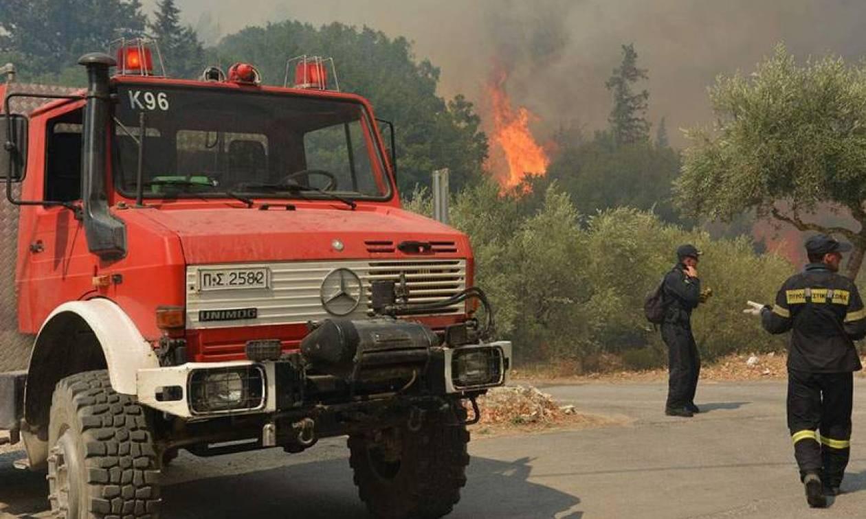 Προσοχή! Πολύ υψηλός ο κίνδυνος πυρκαγιάς και σήμερα Πέμπτη (χάρτης)