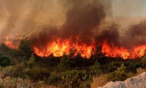 Forest fires break out in Zakynthos
