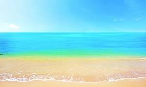 Μεσσηνία: Η παραλία έκρυβε ένα τεράστιο μυστικό - Πανικός με την αποκάλυψη