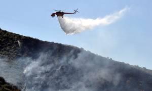 Φωτιά: Σε συναγερμό ο νομός Αχαΐας υπό το φόβο νέων πυρκαγιών