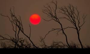 Καλιφόρνια: Οκτώ οι νεκροί από την «πυρκαγιά του αιώνα»