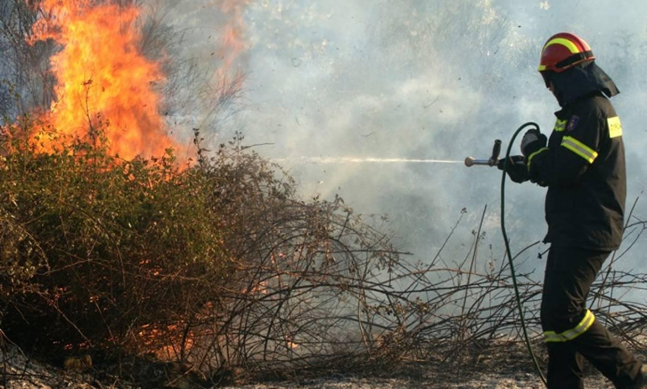 Φωτιά: Σε αυτές τις περιοχές είναι πολύ υψηλός ο κίνδυνος πυρκαγιάς σήμερα (11/08)