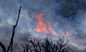 Φωτιά: Νέο πύρινο μέτωπο ξέσπασε στη Ζάκυνθο