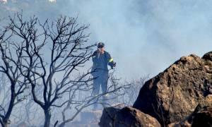 Φωτιές σε Ζάκυνθο και Σαρωνίδα: Ποια είναι η εικόνα στα πύρινα μέτωπα σήμερα