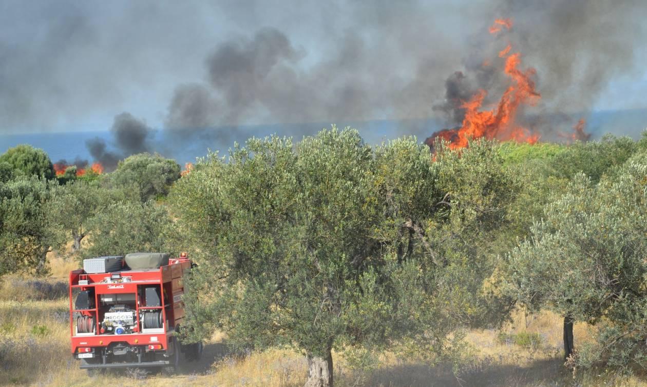 Προσοχή! Πολύ υψηλός ο κίνδυνος πυρκαγιάς σήμερα - Δείτε σε ποιες περιοχές (χάρτης)