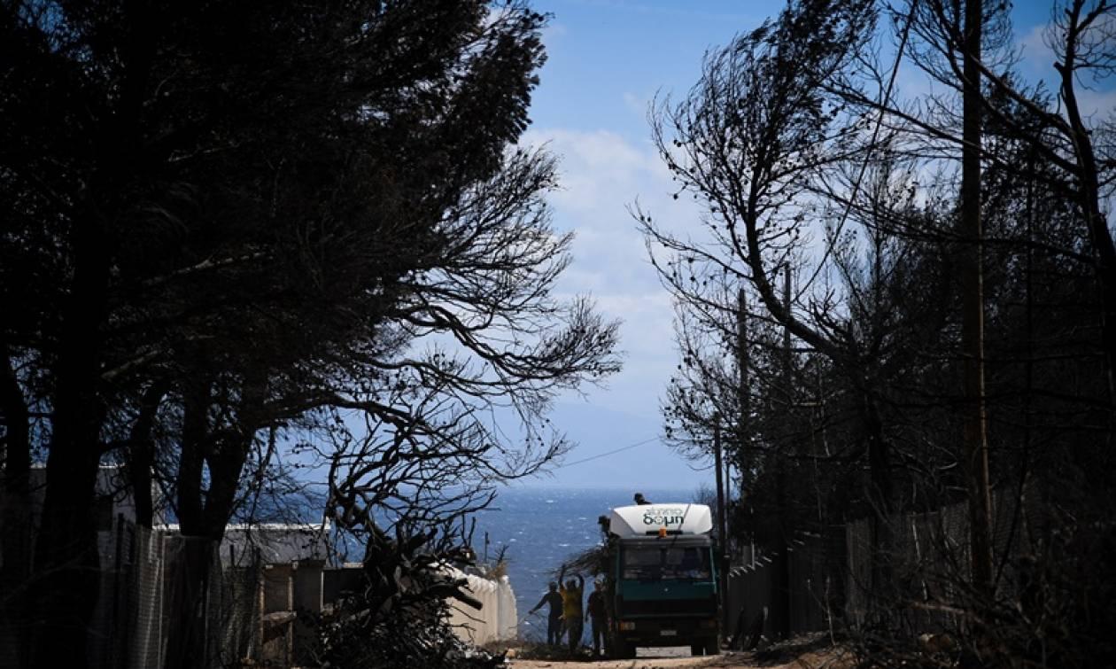 Φωτιά Αττική: Χωρίς προβλήματα η διαδικασία αίτησης για χορήγηση επιδόματος - Έφτασαν τις 3.640