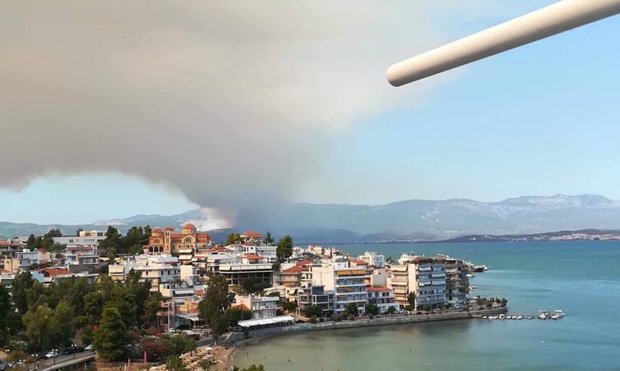 Φωτιά: Πυρκαγιά ΤΩΡΑ στην Εύβοια (pics+vids)