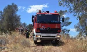 Προσοχή! Πολύ υψηλός ο κίνδυνος πυρκαγιάς σήμερα Δευτέρα - Ποιες περιοχές κινδυνεύουν περισσότερο