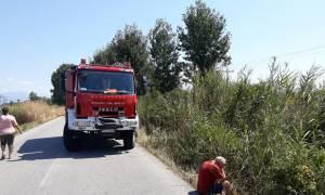 Σοκ στις Σέρρες: Τροχαίο δυστύχημα με οικογένεια
