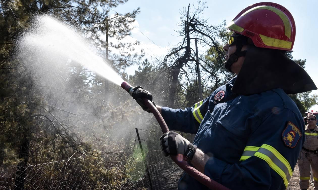 Χανιά: Φωτιά κοντά σε ξενοδοχειακή μονάδα