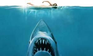 Απίστευτο: Τα «Σαγόνια του Καρχαρία» κρύβουν το μυστικό ανεξιχνίαστου φόνου πριν από 44 χρόνια;