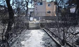 Φωτιές Αττική: 4.034 αιτήσεις για το έκτακτο επίδομα
