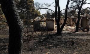 Φωτιά Αττική: Στις 4.076 οι αιτήσεις πυρόπληκτων για τη χορήγηση επιδόματος