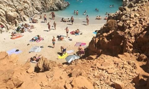 Κρήτη: Δεν πίστευαν στα μάτια τους με αυτό που τους πλησίασε σε διάσημη παραλία (vids+pics)