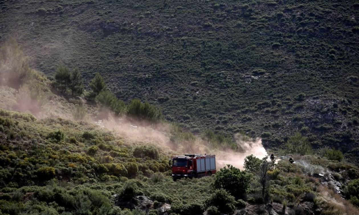 Φωτιά: Υπό έλεγχο οι πυρκαγιές σε Κερατέα και Καλύβια