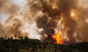 Δύο πυρκαγιές καίνε την Ηλεία: Νέα εστία φωτιάς απειλεί τα χωριά Ανάληψη και Γεράκι