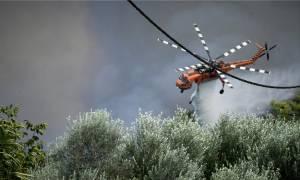 Φωτιά στην Ηλεία: «Κρίσιμες οι επόμενες ώρες. Η πυρκαγιά είναι σε πλήρη εξέλιξη»