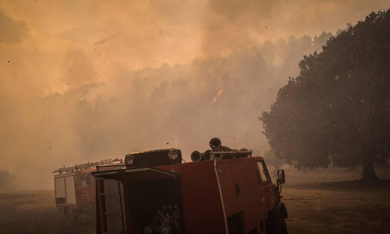 Φωτιά Ηλεία: Ολονύχτια μάχη με τις φλόγες - Φοβούνται για αναζωπυρώσεις στη Δαφνιώτισσα