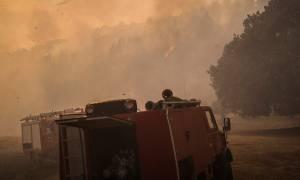 Συναγερμός: Φωτιά στη Σαλαμίνα – Απομακρύνθηκαν 60 πρόσκοποι από κατασκήνωση