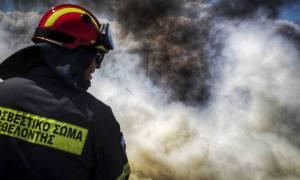 Υπό έλεγχο η πυρκαγιά στα Κανάκια Σαλαμίνας