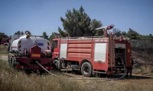 Φωτιά Χίος: Μαίνεται η μεγάλη πυρκαγιά στην Ουρά Αμάδων