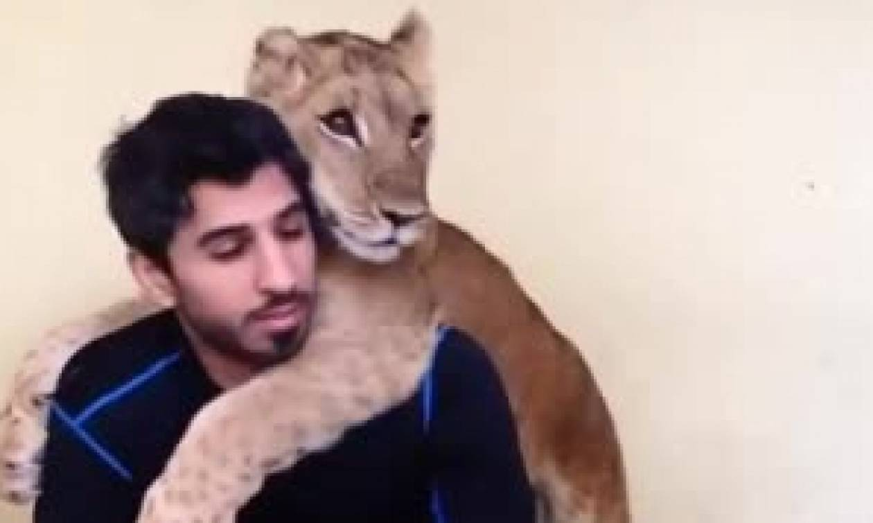 Απίστευτο: Δείτε τις αγκαλιές που κάνει λιονταράκι στον άντρα που το φροντίζει (vid)