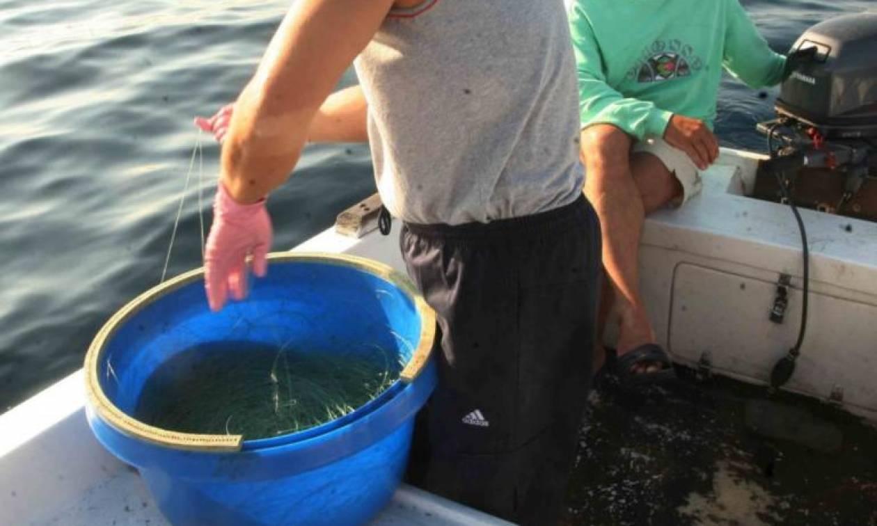 Γαύδος: Ψαράς έμεινε άφωνος με το «τέρας» που αντίκρισε! Δεν είχε ξαναδεί ποτέ του κάτι τέτοιο!