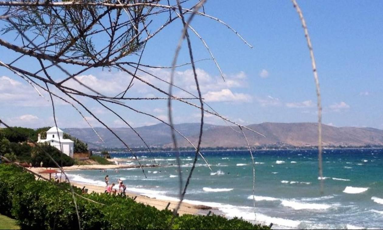 Καιρός: Έως 35 βαθμούς η θερμοκρασία με ενισχυμένο βοριαδάκι στο Αιγαίο