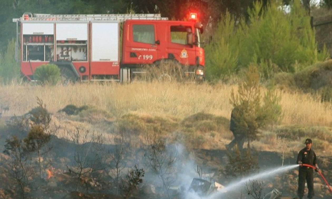 Φωτιά στο Άλσος Βεΐκου