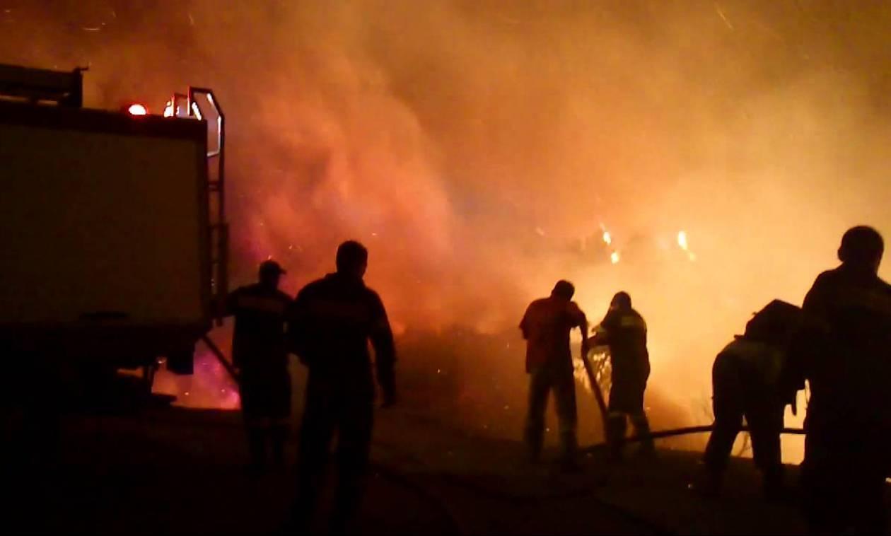 Ολονύχτια μάχη με τις φλόγες στο Οίτυλο Λακωνίας